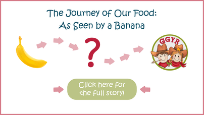 The Journey of our Food: As seen by a banana